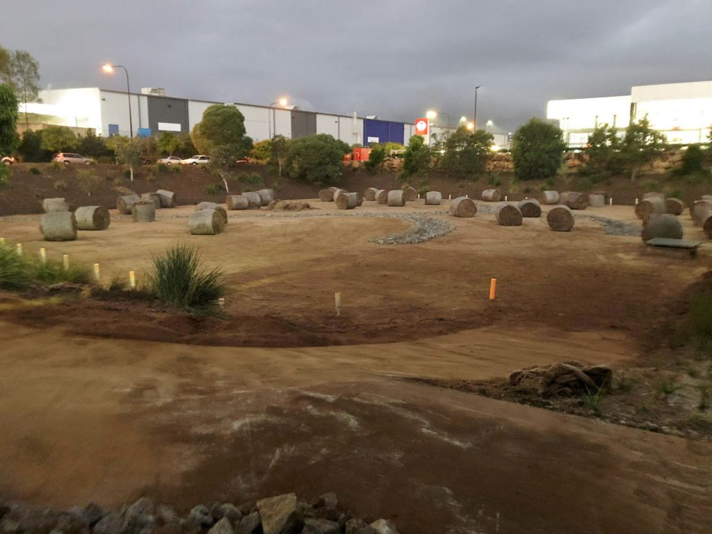 bioretention basin cleaning