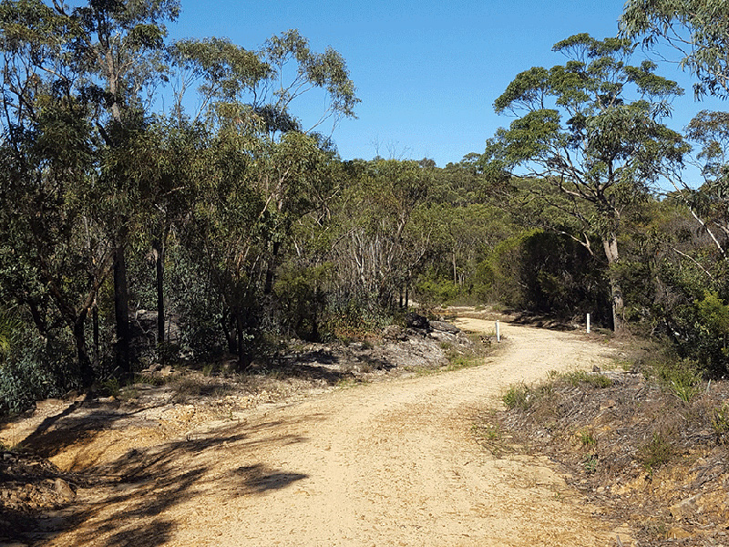 fire-trail-blue-mountains-nsw